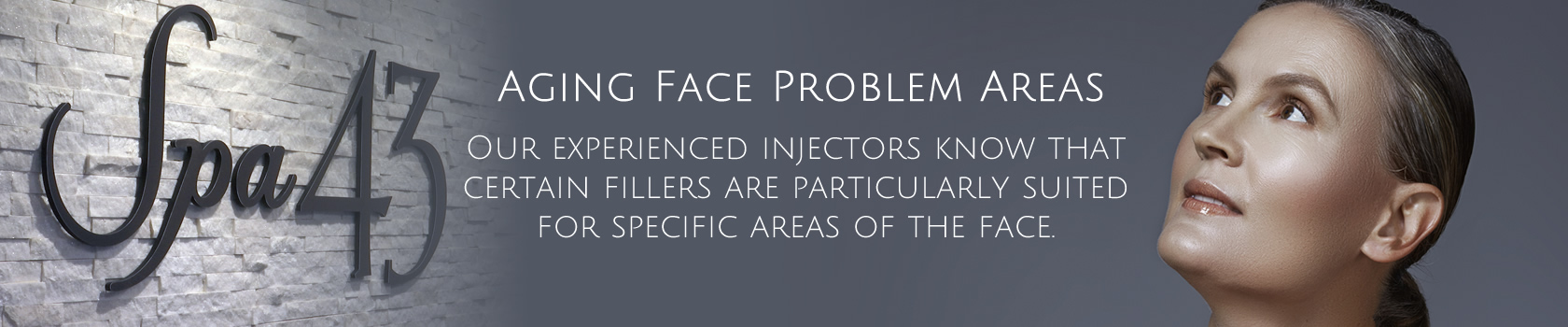 Aging Face Problems Areas